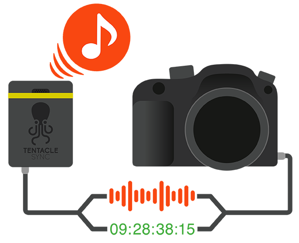 This Infographic shows that Timecode and Audio from the built-in Microphone is recorded on the camera- Smart Timecode Generator with Bluetooth Connectivity - Syncing Simplicity